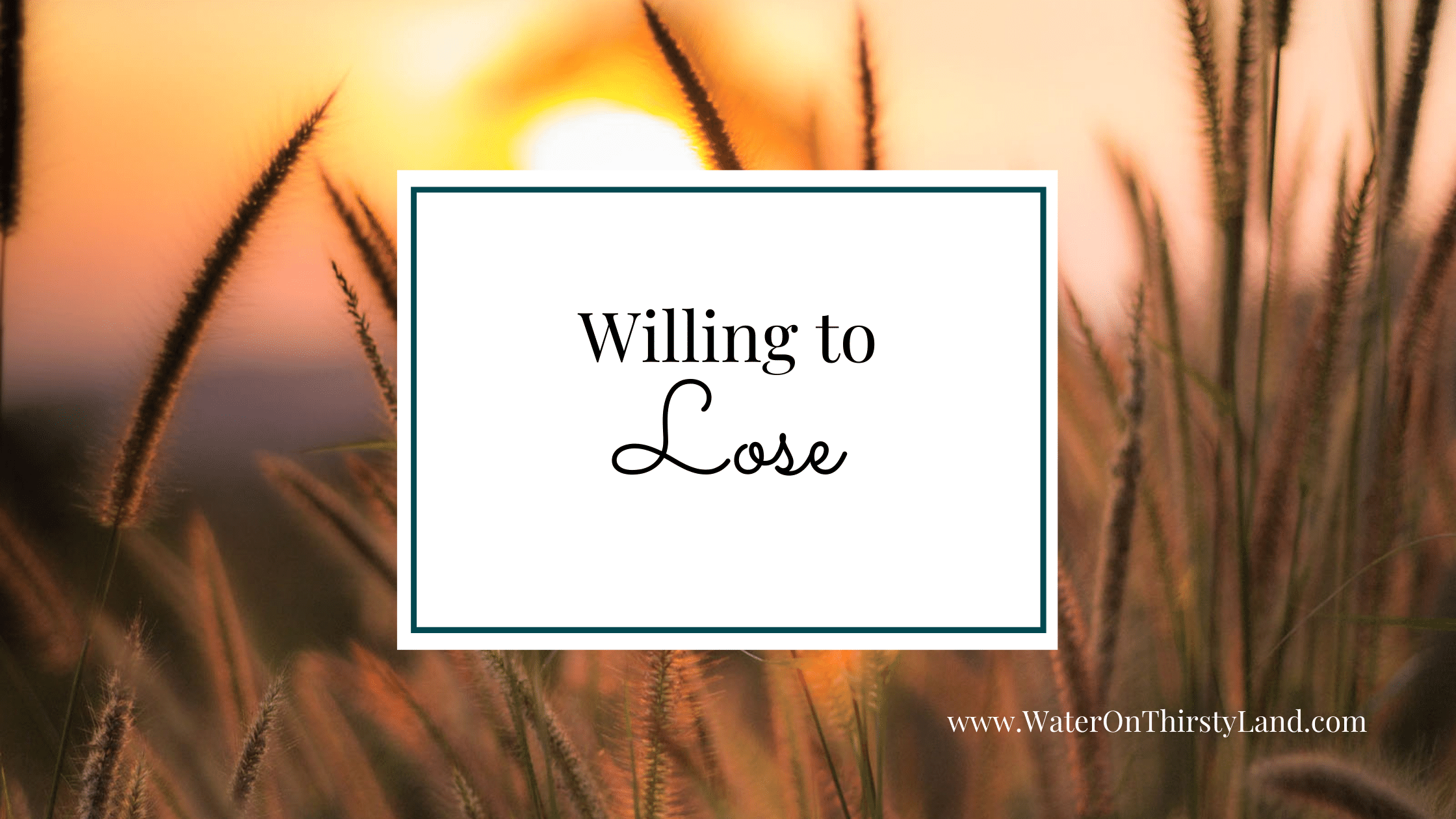 Willing to Lose