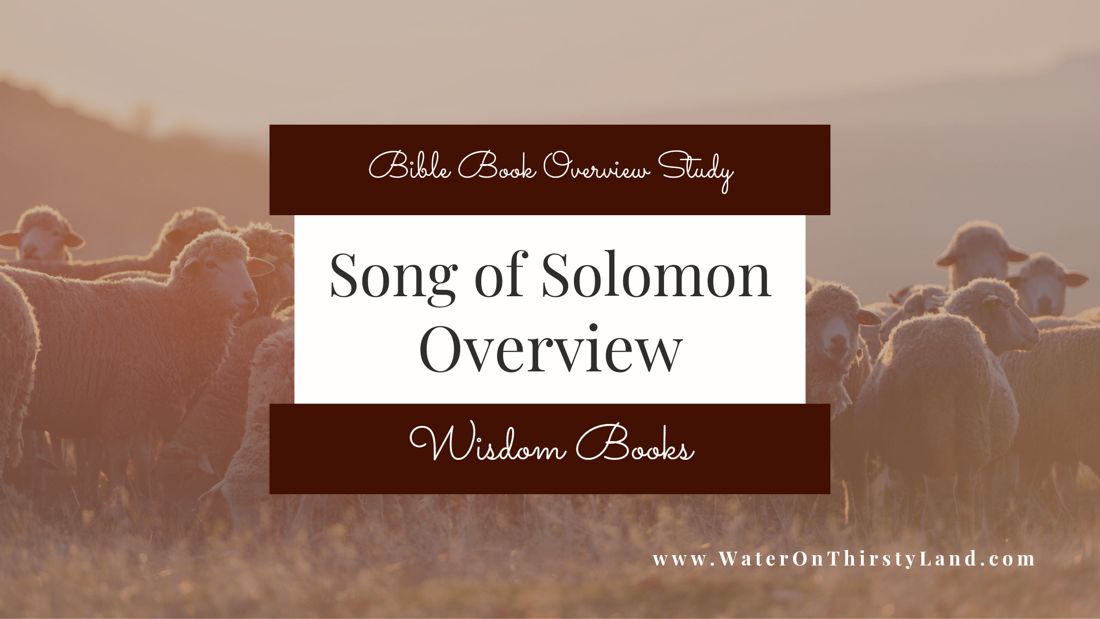Song of Solomon Overview