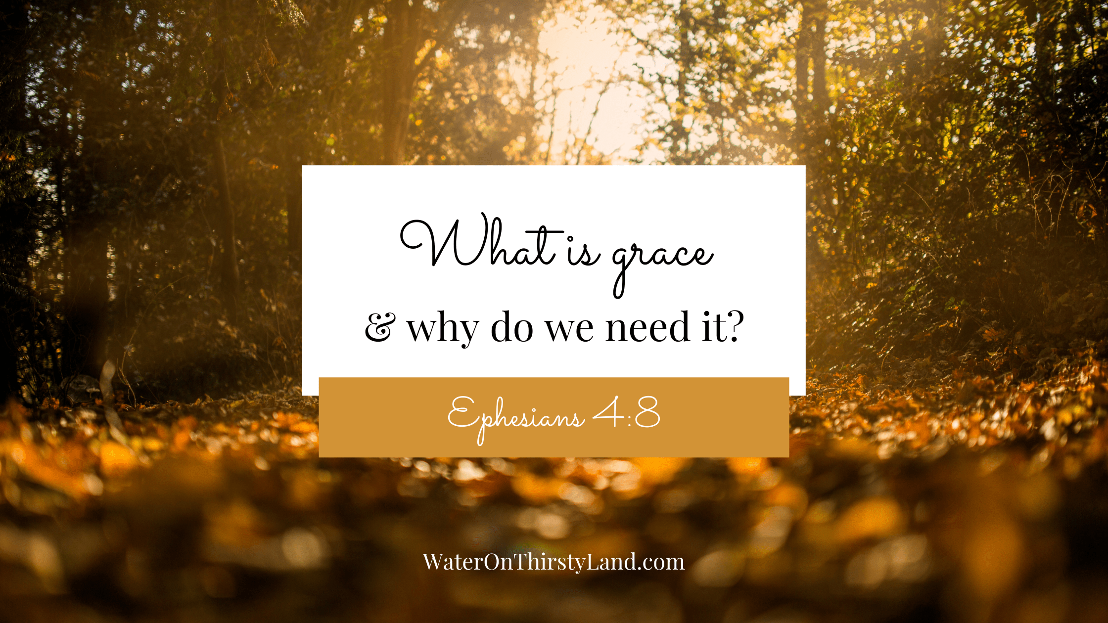 What is grace & why do we need it?